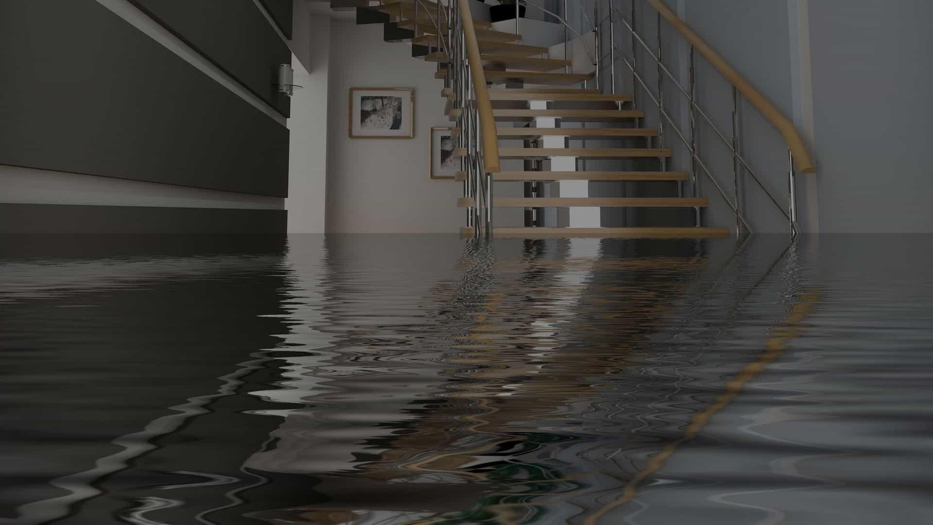 water damage lakewood